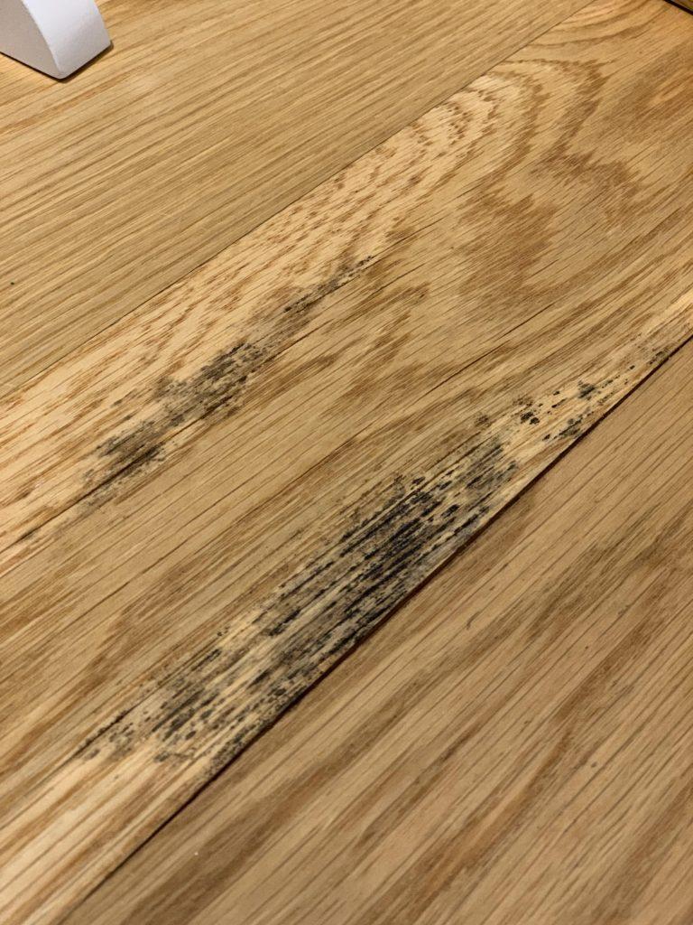 kaip panaikinti pelėsį nuo medienos